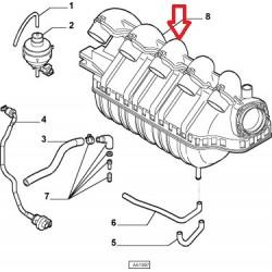 Inlet manifold - Fiat / Lancia