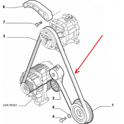 Belt - Fiat / Lancia