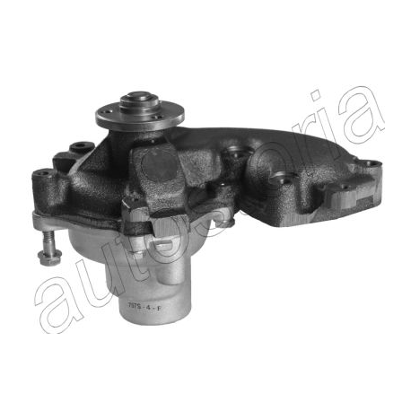 Water pump with lid - Fiat Palio (1998-- ) / Punto (1993-- )