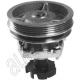 Water pump - Fiat Tempra (1990--1993) / Tipo