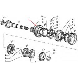 Gearbox pinion - Alfa Romeo / Fiat