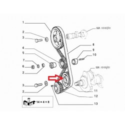 Timing belt gear - Fiat / Lancia