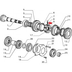 Gearbox spring - Alfa Romeo / Fiat / Lancia